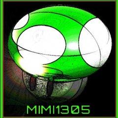 Mimi1305