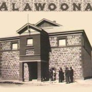alawoona
